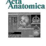 Acta Anatomica 160, No. 2, 1997