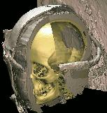 Skull of the Virtual Mummy